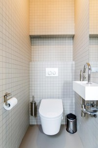 abundance suite japanese toilet (air and watercleaning)